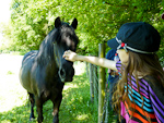 [ 27/05/12 - Greeting the horses on a geocaching walk ]